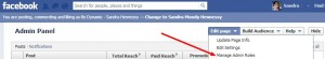 changing facebook admin